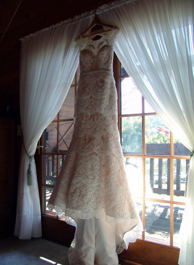 The Dress3